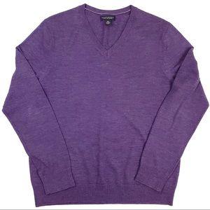 Banana Republic Merino Wool V Neck Sweater